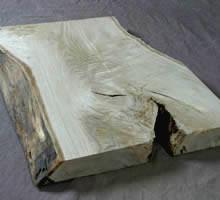 栃の木 トチ